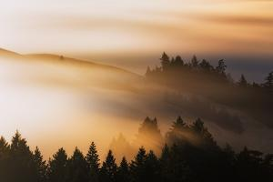 Light and Mist Sweep, Hills and Fog, Mount Tamalpais Marin County by Vincent James