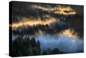 Light & Fog Wonderland Abstract Mount Hood Wilderness Sandy Oregon Pacific Northwest by Vincent James