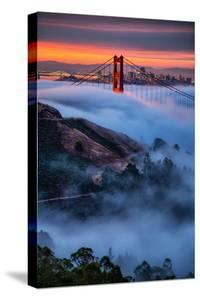 Magical Fog and Sunrise Light, Golden Gate Bridge, San Francisco by Vincent James