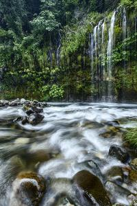Magical Mossbrae Waterfall, Mount Shasta California by Vincent James