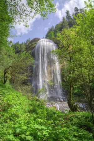 Majestic Silver Falls, Oregon Coast by Vincent James