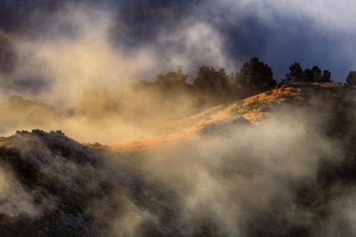 Marin Mist & Light Scene Marin Headlands Northern California by Vincent James