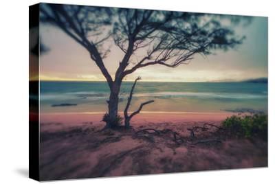 Memory Beach, Kauai