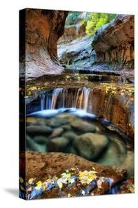 Mesmerizing & Beautiful Subway in Autumn at Zion National Park Utah by Vincent James