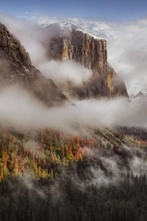 Mighty El Capitan Trees & Fog Tunnel View Yosemite National Park by Vincent James