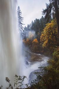 Misty Autumn Forest and Rushing Waterfall, Silverton South Falls, Portland, Oregon by Vincent James