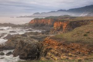 Misty Bluffs at Salt Point, Northern California Coast by Vincent James