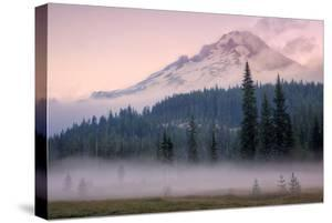 Misty Morning at Mount Hood Meadow by Vincent James