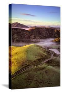Misty Morning Hills of Petaluma Countryside, Northern California by Vincent James
