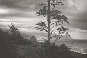 Moody Cannon Beach, Black and White, Oregon Coast by Vincent James
