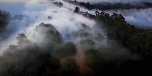 Morning Fog Magic in Flight From The Sky Over Oakland Hills by Vincent James