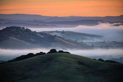 Morning Light & Low Misty Fog Through Petaluma Sonoma Hills by Vincent James