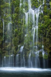 Mossbrae Weeping Waterfall, Mount Shasta California by Vincent James