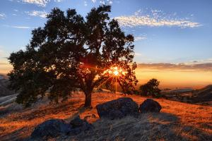 Mount Diablo Sun Star & Rocks Walnut Creek Danville State Park by Vincent James