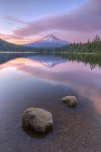 Mount Hood at Beautiful Trillium Lake by Vincent James
