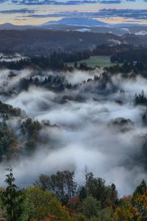 Mount Hood & Foggy Sandy River Wilderness Sandy Oregon Pacific Northwest by Vincent James