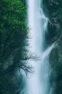 Multnomah Detail in Spring, Waterfall Columbia River Gorge, Oregon by Vincent James