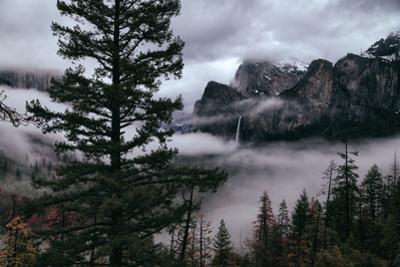 Mystical Fog Fills Yosemite Valley at Bridalveil Falls January National Parks by Vincent James