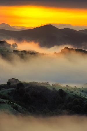 Mystical Morning Mist & Sunrise Light, Oakland Bay Area by Vincent James
