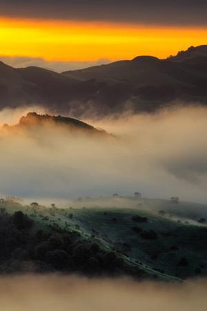 Mystical Morning Mist & Sunrise Light, Oakland Hills by Vincent James