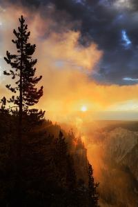 Mystical Sunrise Fog at Grand Canyon, Yellow Stine National Park, Wyoming by Vincent James
