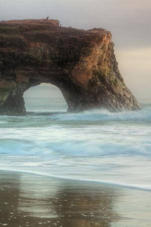 Natural Bridge Portrait, Santa Cruz by Vincent James
