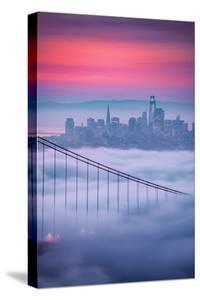 New Fog City Sweet Low Mist Morning Vibes San Francisco Golden Gate by Vincent James