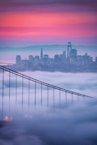 New Fog City Sweet Low Mist Morning Vibes San Francisco Golden Gate by Vincent James