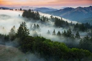 Night Comes Down Fog Rolls In, Northern California Coast by Vincent James