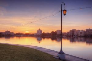 Oakland Lakeside Scene by Vincent James