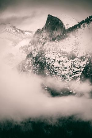 Obscure, Mid Winter Fog and Mood at Yosemite Valley by Vincent James