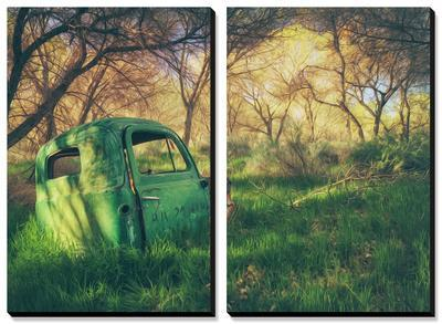Old Pickup in the Woods, Central Valley