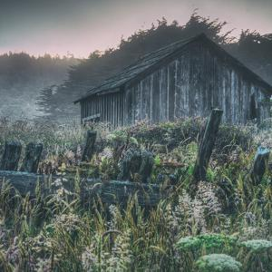 Old Shack at Sea Ranch by Vincent James