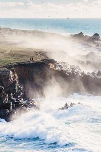 On the Misty Trail, Sonoma Coast, California State Parks by Vincent James