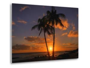 Palm Trees and Setting Sun, Kauai Hawaii by Vincent James
