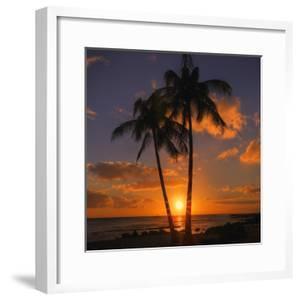 Palm Trees and Setting Sun (Square), Kauai Hawaii by Vincent James