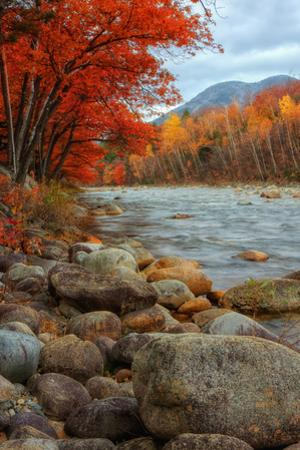 Pemigewasset Riverside in Autumn by Vincent James