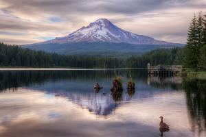 Quiet Time at Trillium Lake, Mount Hood Wilderness, Oregon by Vincent James