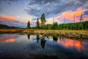 Riverside Sunset Reflections, Gibbon River, Yellowstone National Park by Vincent James