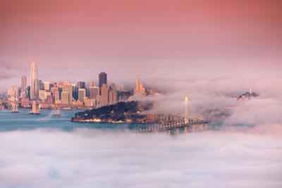 San Francisco In Fog Bay Bridge Morning Light Transamerica by Vincent James