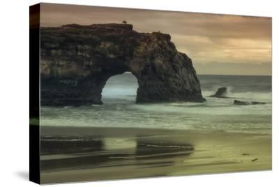 Scene at Natural Bridges, Santa Cruz