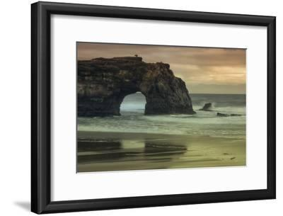 Scene at Natural Bridges, Santa Cruz