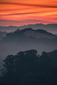 Smokey Hills and Mist in Oakland Hills, California by Vincent James