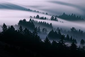 Smooth Fog Flow, San Francisco, Mount Tamalpais by Vincent James
