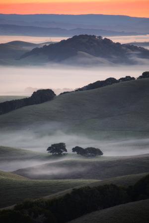 Sonoma Fog & Morning Light Hills of Petaluma Northern California by Vincent James