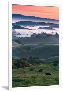Spring Hills With Fog Petaluma Sonoma California by Vincent James