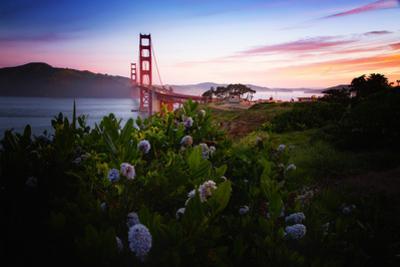 Spring Mix and Sunrise at Golden Gate Bridge San Francisco by Vincent James