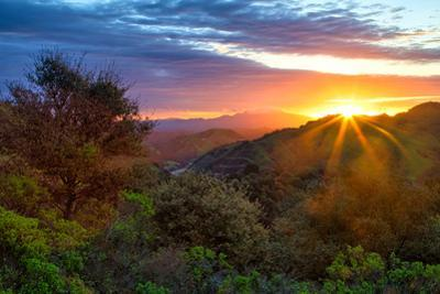 Stormy Morning Sun Star, Oakland Hills, Contra Costra, Mount Diablo, Bay Area by Vincent James