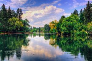 Summer Afternoon Reflections at Drake Park, Bend Oregon by Vincent James