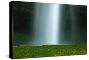 Summer Falls Abstract Wildflowers Seljalandsfoss Southern Iceland by Vincent James
